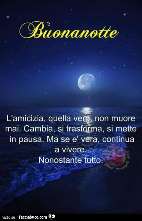 Buonanotte Lamicizia Quella Vera Non Muore Mai Cambia Si