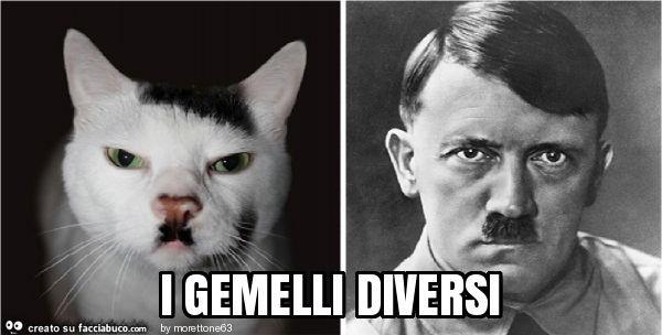 I gemelli diversi - I gemelli diversi ...