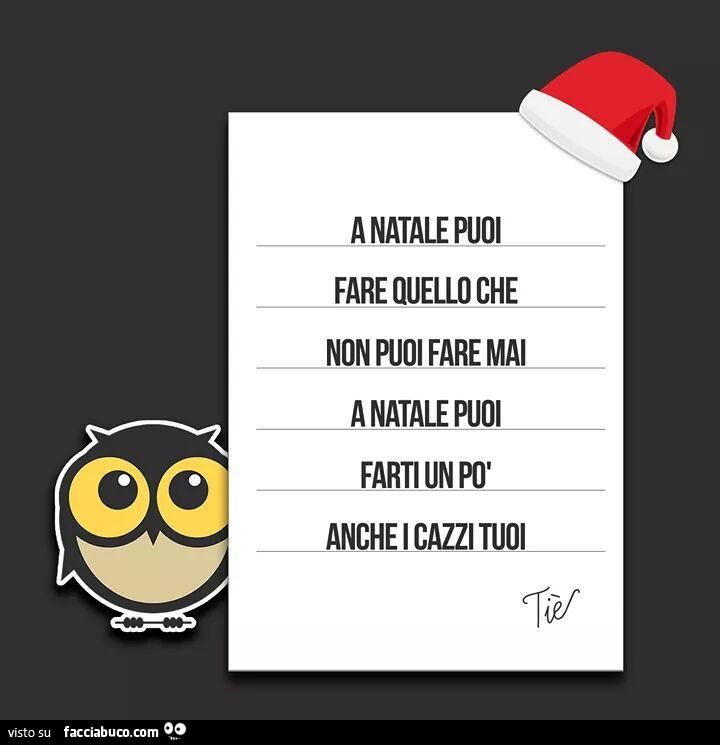 A Natale Puoi.A Natale Puoi Fare Che Non Puoi Fare Mai A Natale Puoi Farti Un Po Anche I Cazzi Tuoi Facciabuco Com